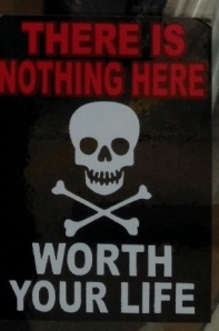 Nothing_worth_your_life2