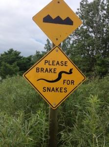 brake_for_snakes