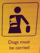dogs_must_be_carried2