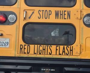 bus_ do not lift 3
